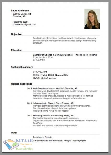 sample cv resume for jobs tips and guide