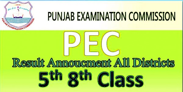 Punjab PEC 8th and 5th Class Board Result 2021 Date of Announcement For Districts