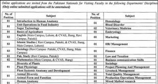 University Of Veterinary And Animal Sciences UVAS Lahore Jobs 2021
