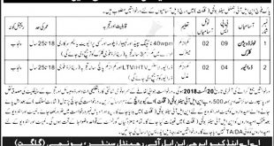 Pakistan Army NLI Regiment Center Bonji Gilgit Jobs 2021