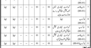 Special Education Department Punjab Jobs 2021 Last Date Application Form
