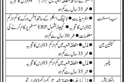 Karachi Shipyard And Engineering Works Limited Jobs 2021 Application Form