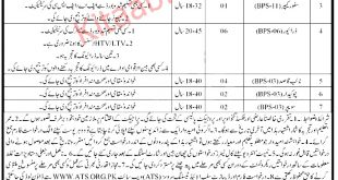 Live Stock And Dairy Development Department KPK Jobs 2021 Eligibility Criteria Last Date